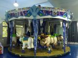 16 seater ice carousel